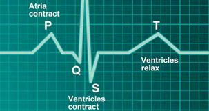 Cardiac Volumes