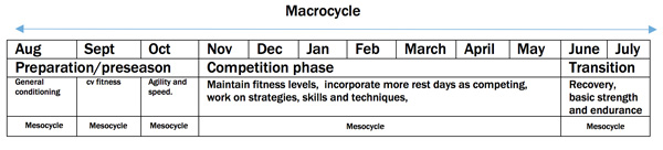 macrocycle