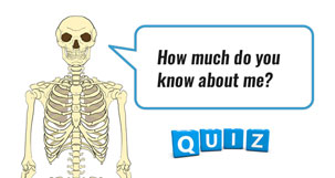 Skeleton and bones quizzes